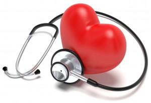 Reishi bio a des vertus de protection du système cardiovasculaire